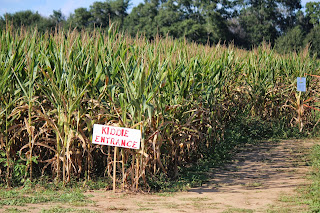 Pumpkin Patch & Corn Mazes in Milton FL