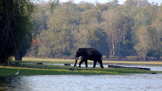 Nagarhole National Park Coorg