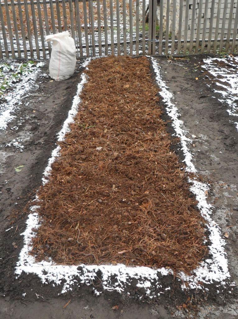 Как сделать грядку под чеснок на зиму 197