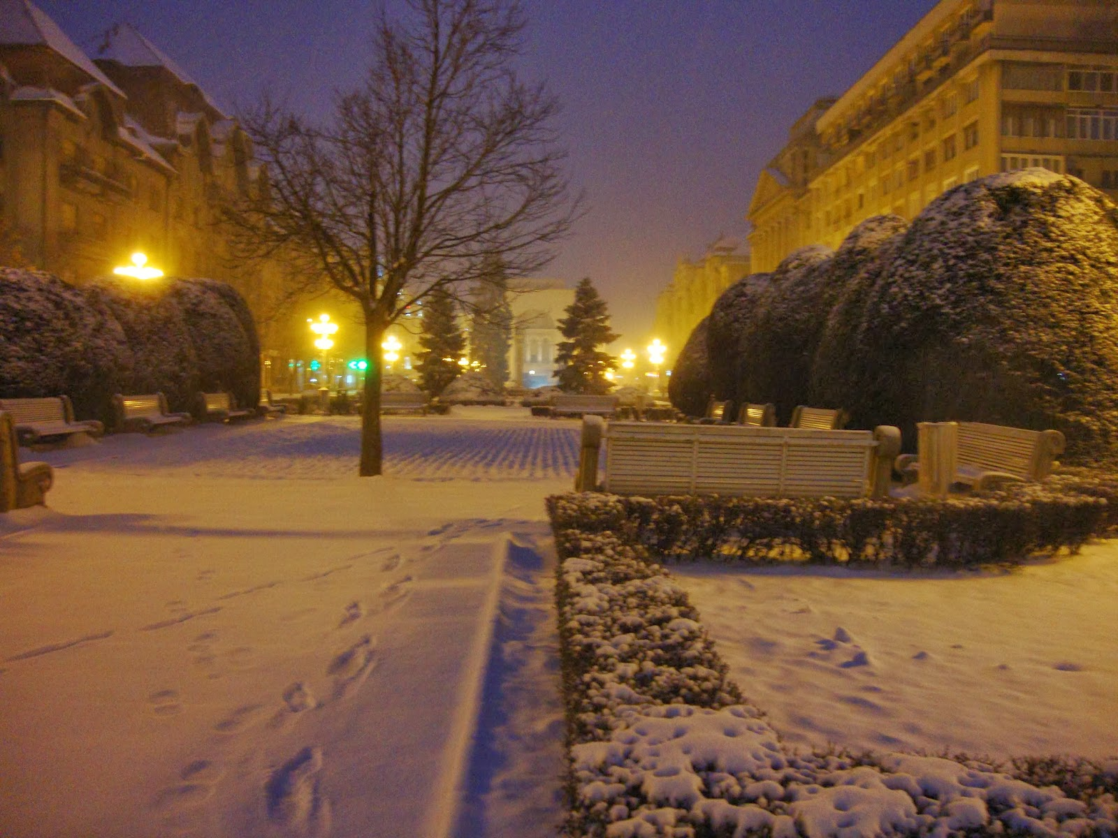 Timisoara iarna  - Piata Operei