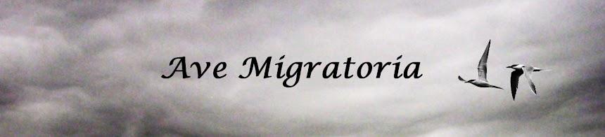 Ave Migratoria