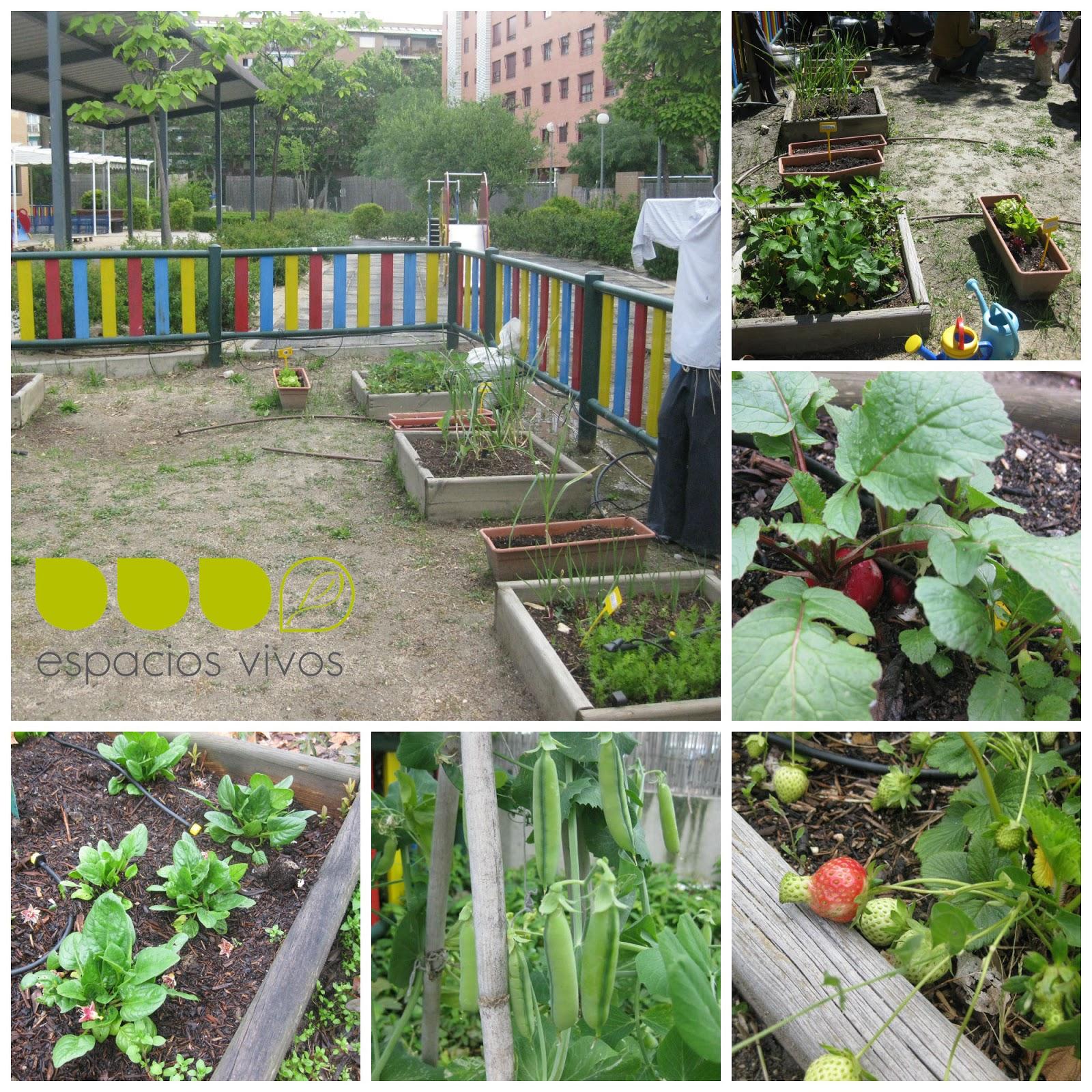 Jardines para niños, jardines para aprender - Espacios Vivos