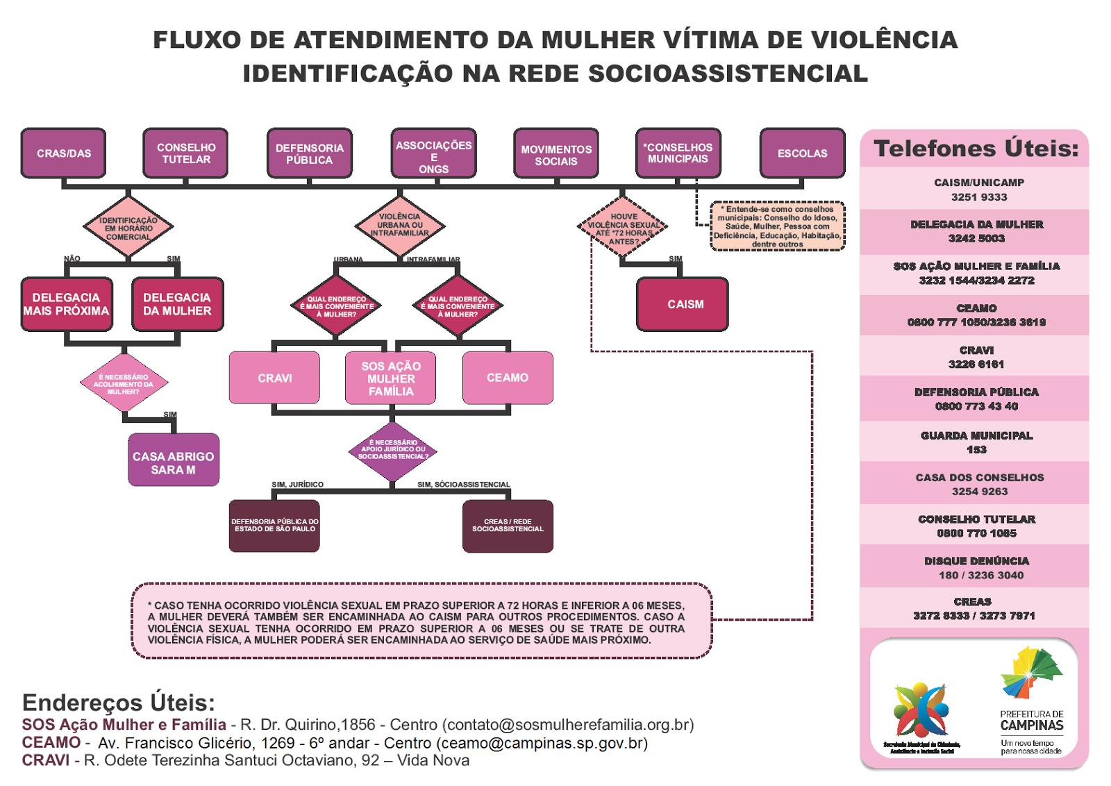 Fluxo da Rede da Mulher em Campinas/SP