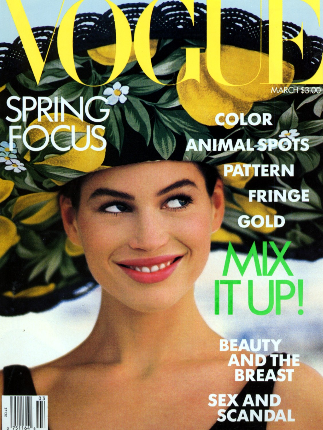 http://3.bp.blogspot.com/-t13i0prXbi4/Tg45kPM60bI/AAAAAAAABro/Qp6AnRmgT6o/s1600/Carre+US+Vogue+March+1989.jpg