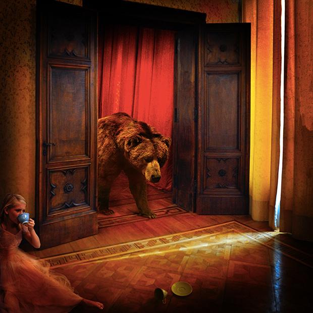 Animal Visions - Tom Chambers