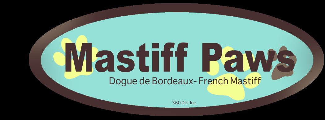 Mastiff Paws