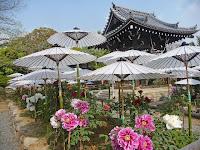 当寺に最も便利なのはシャトルバスが良く、長岡京記念文化会館前より100円で運行している。