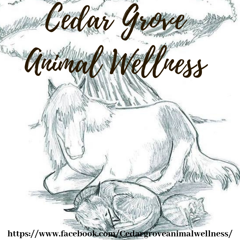 Cedar Grove Animal Wellness