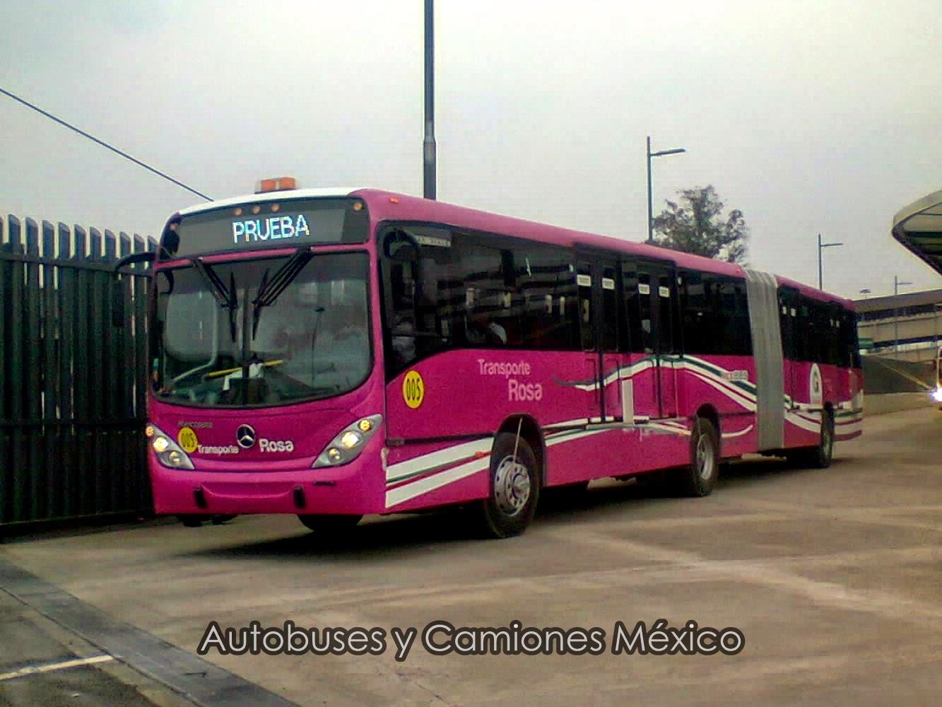 MEXIBÚS Línea 3 (Pantitlán - Chimalhuacán); Transporte Rosa