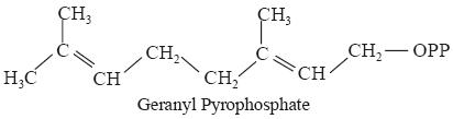 geranyl pyrophosphate