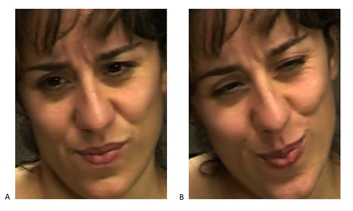 Computers See Through Faked Expressions of Pain Better Than People