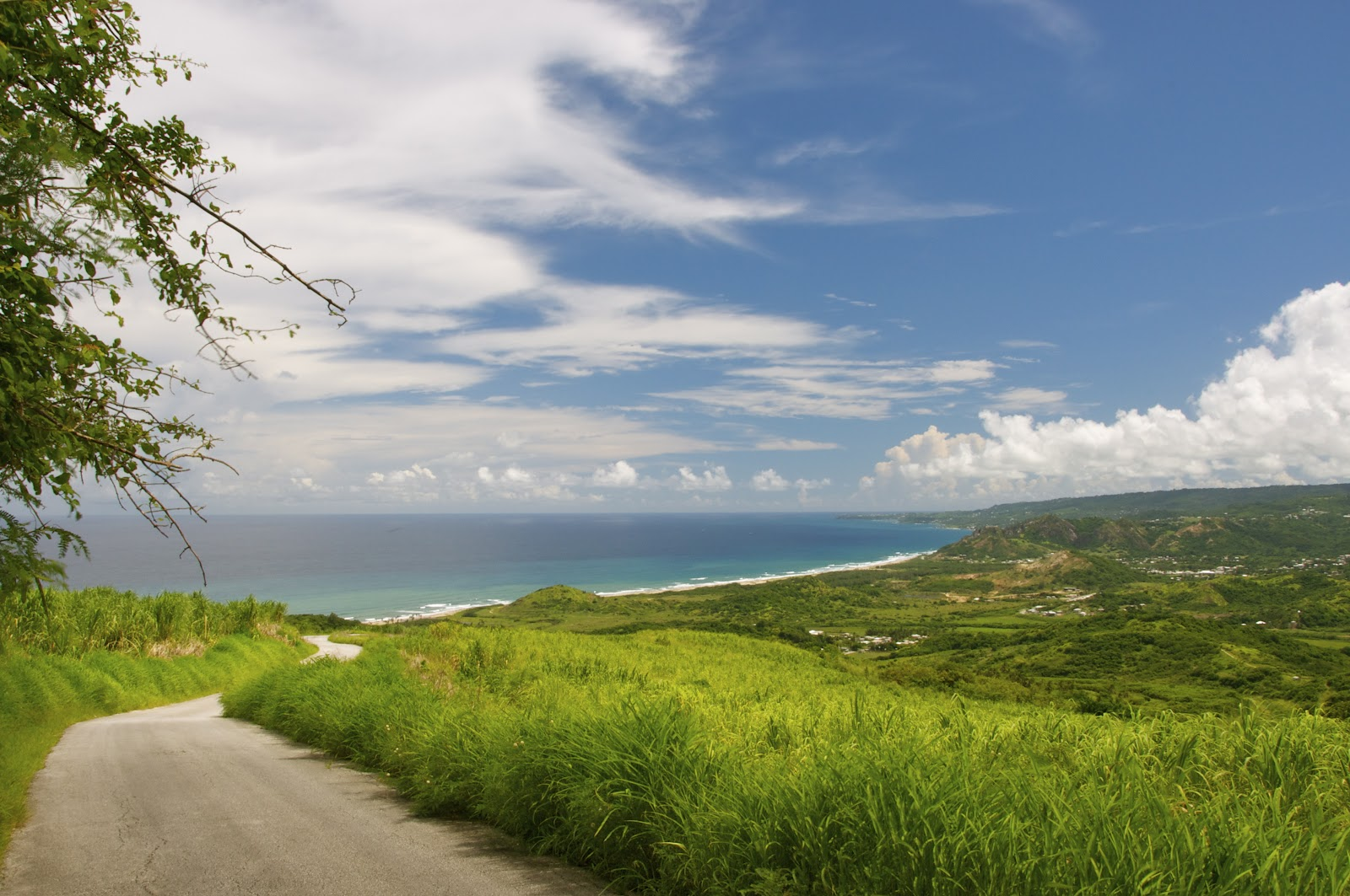 cherry tree hill loop barbados top 5 things to do in barbados if you are only here for one day