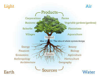 Permaculture, permaculture tree, edible knowledge, the principles of permaculture