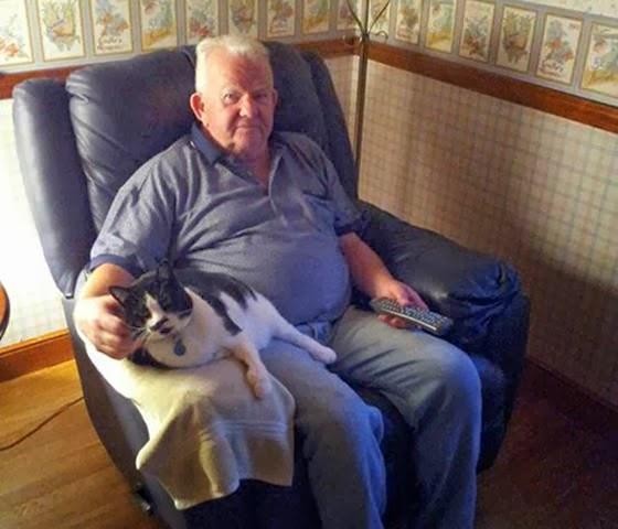 foto kakek dan kucingnya nonton tv bareng