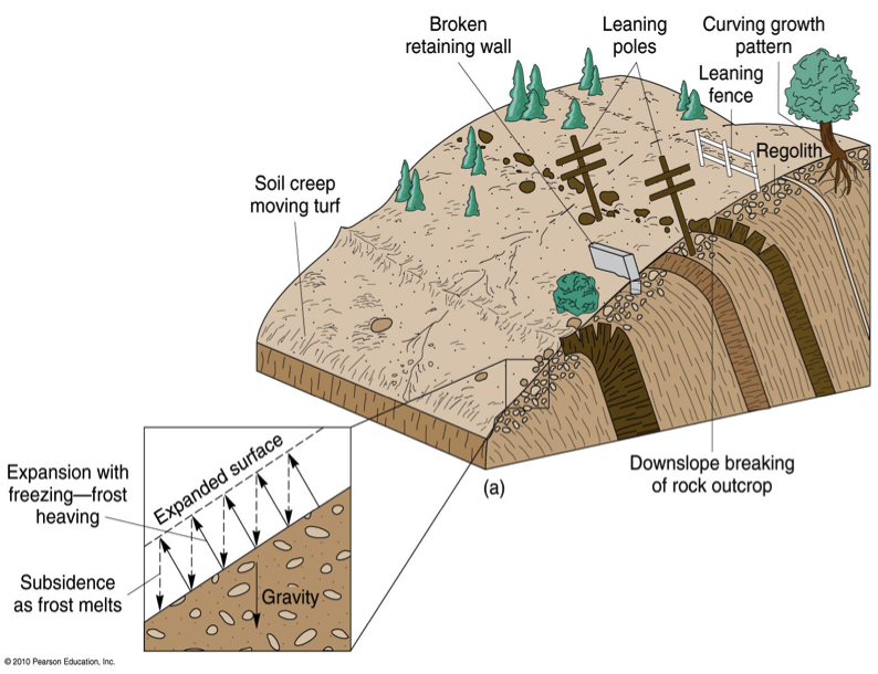 Igcse a level geography for Formation of soil diagram