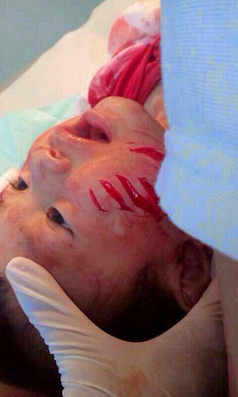 Gempar! Bayi 8 Bulan Dibaham Biawak Besar, bayi dimakan biawak di pulau tioman, bayi hampir dibaham biawak di kampaung tekek, kampung tekek pulau tioman, biawak besar pulau tioman, biawak baham bayi, biawak makan bayi