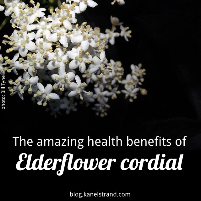 health benefits of elderflower cordial and how to make it at home via @kanelstrand