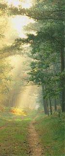 Toutes les tribulations ou épreuves que Dieu permet../St-Jean de la Croix Epreuve