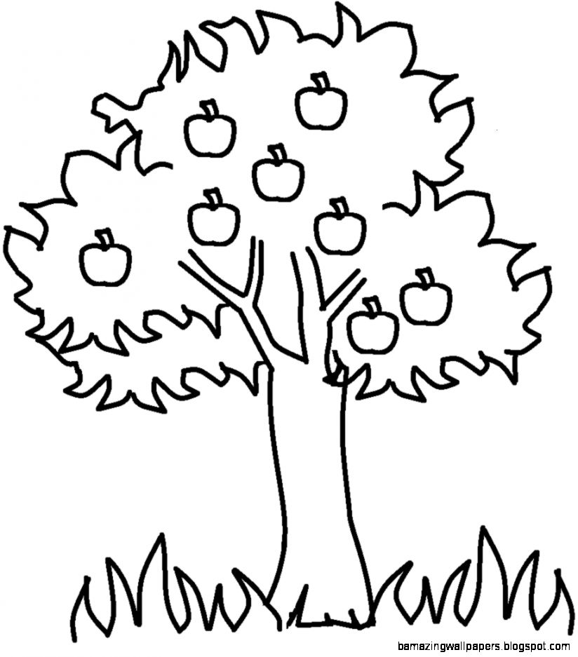 Fall Tree Black And White Clipart   Clipart Kid
