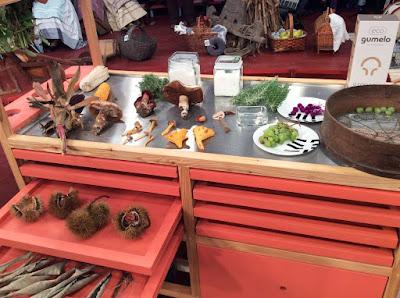 http://media.rtp.pt/praca/artigos/cogumelos-e-castanhas-no-cantinho-das-aromaticas/