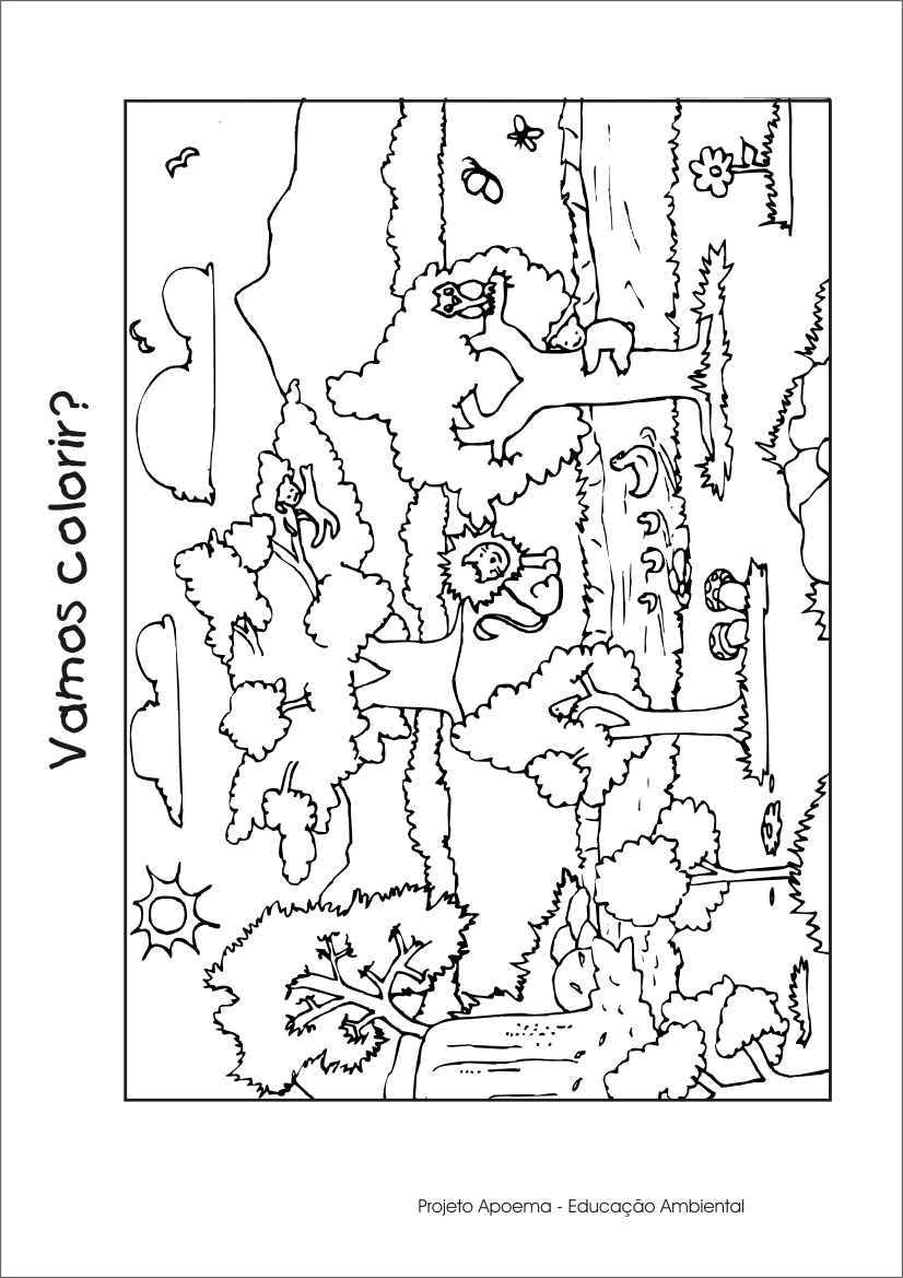 desenhos de paisagens e meio ambiente para colorir desenhos para