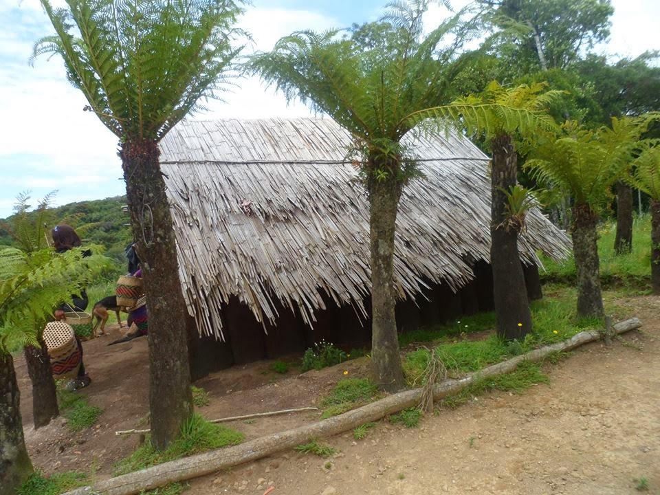 Reserva Guarani- Riozinho/RS