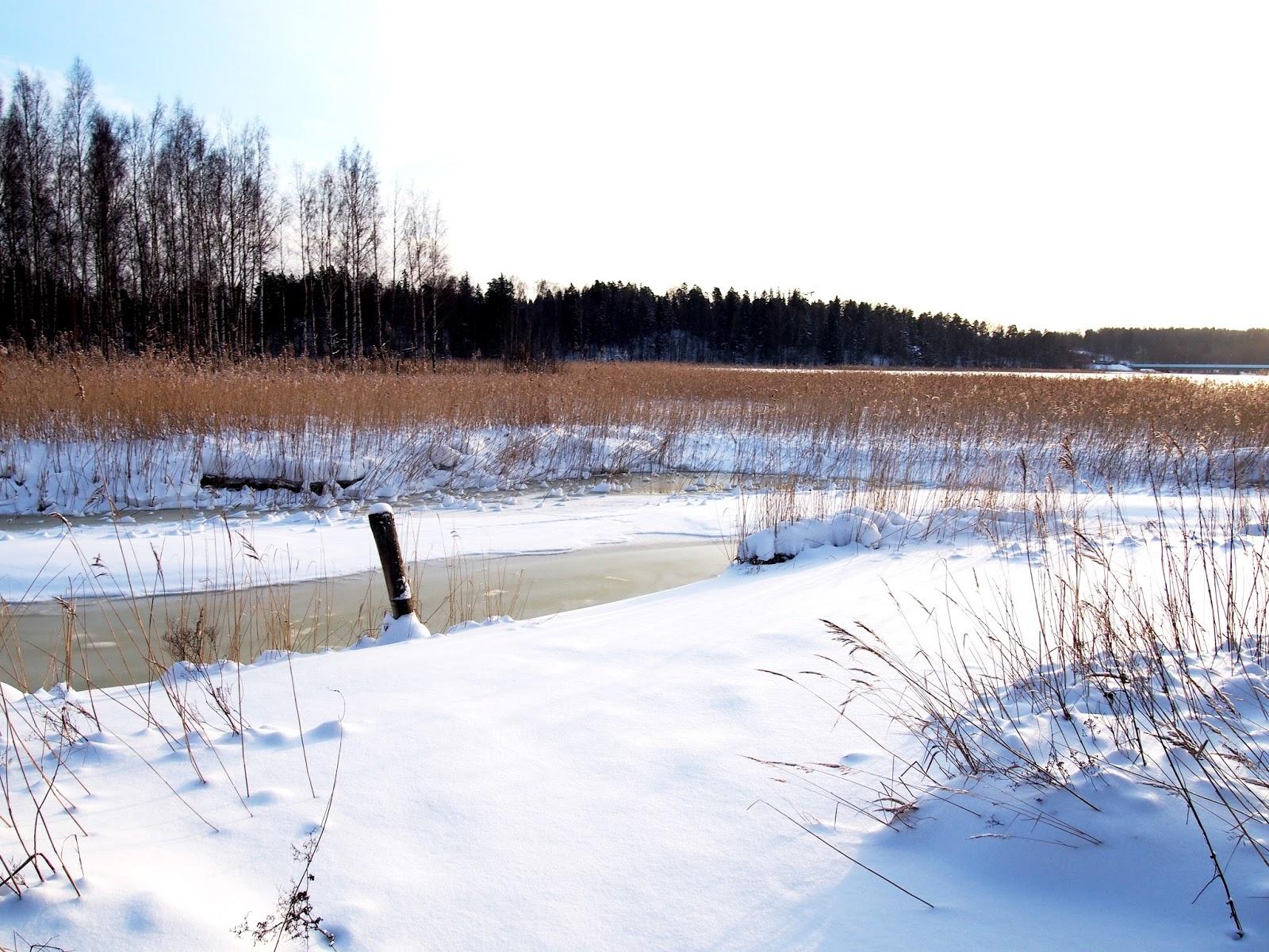 Luulisi, että olen maalla kun maisemat on niin upean talviset lumikinoksineen ja jäisine lahtineen, mutta Helsingissä ollaan.