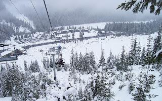 white pass washington ski area