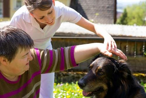 Perros de ayuda a personas enfermas o de duelo