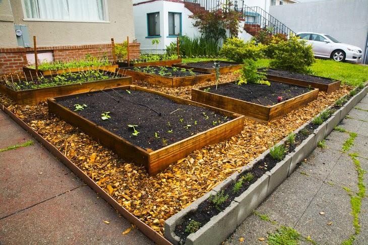 Cinder blocks and wood chips fill in the rest of the lawn. - He Started With Some Boxes, 60 Days Later, The Neighbors Could Not Believe What He Built