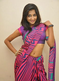Actress Akshaya  Saree Pictures at Adi Lekka Movie Audio Success Meet  0081.jpg