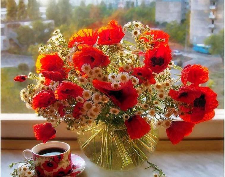 Good Morning Love Flower Wallpaper : Allfreshwallpaper: Lovely and Beautiful Good Morning Wallpapers