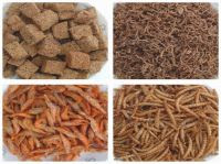 Freeze Dried Fish Food