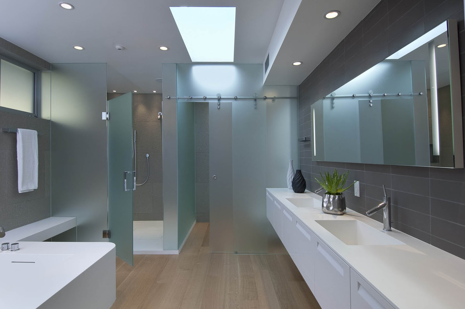 Hollywood hills master bathroom design project the design - Picture Of Large Modern Bathroom Modern Home Bathroom In Hollywood Hills
