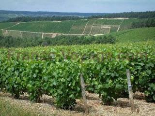 La Champagne-Ardenne