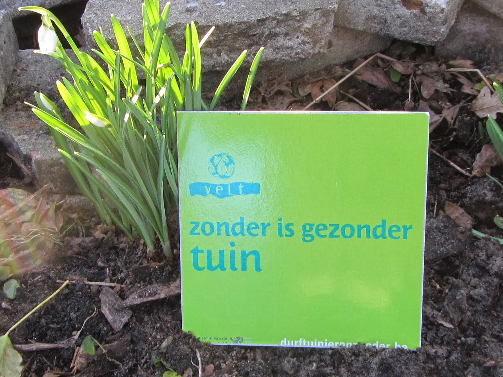 Zonder is gezonder tuin