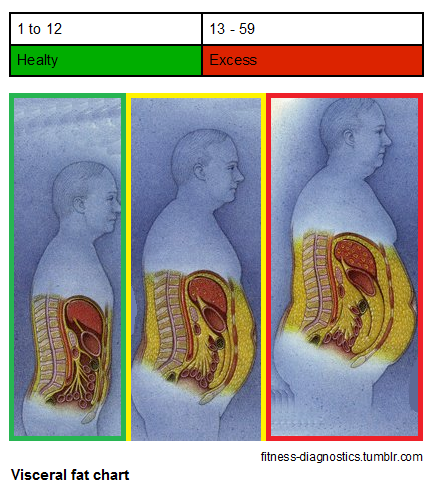 Over the counter weight loss pill that actually works image 5