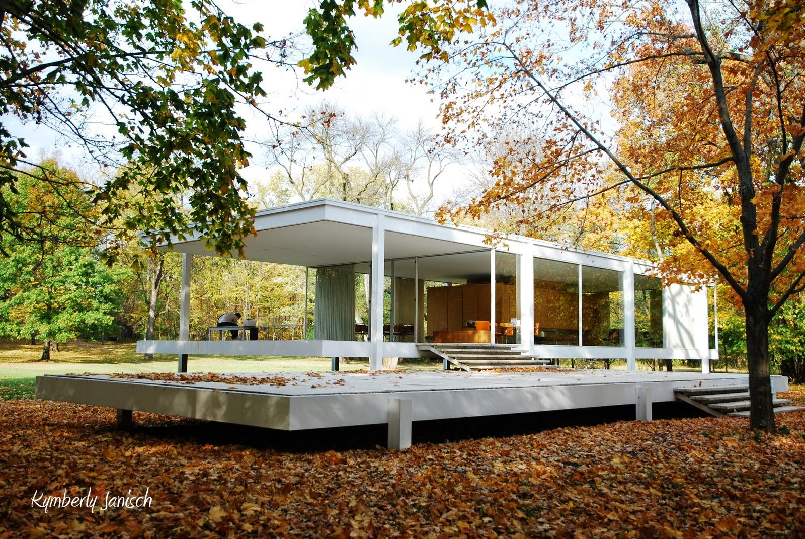 historia dise o interiores ied mies van der rohe farnsworth house. Black Bedroom Furniture Sets. Home Design Ideas