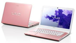 Sony VAIO E14 Series SVE14126CXP Notebook Driver and Review