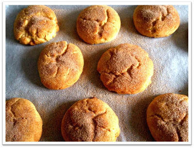 spice biscuits snickerdoodles