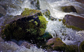 Water Through Rocks wallpaper