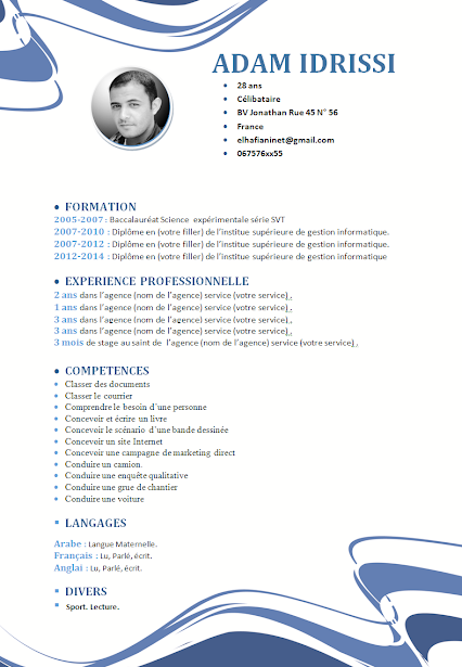 Resume en francais sample what is good resume template the design work curriculum vitae english europass europass cv cheret yelopaper Images