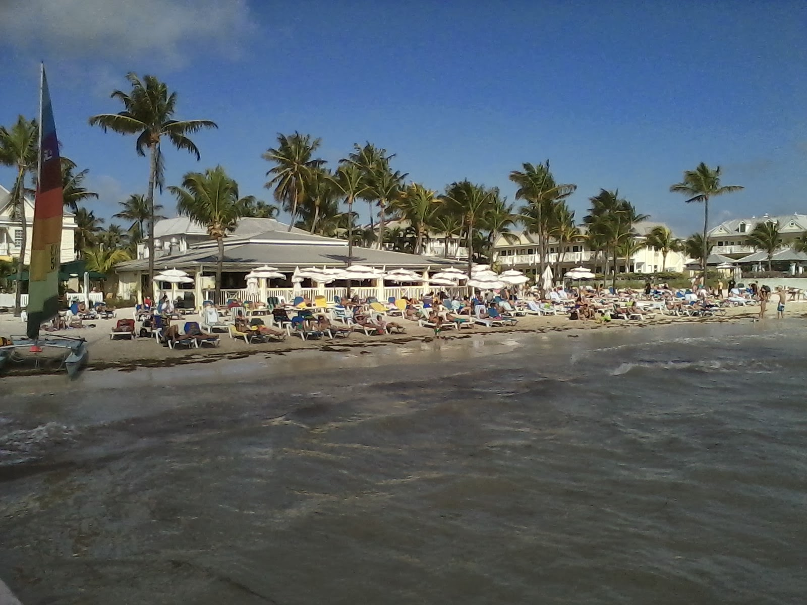 this week on the island this week on the island 01 12 2014