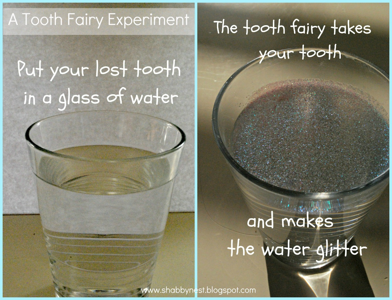 the shabby nest the great tooth fairy experiment