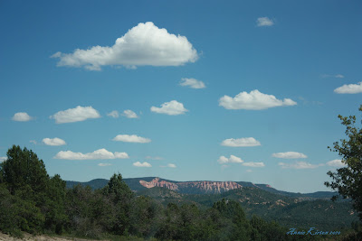 Forest vista with red rock mountains and blue skies