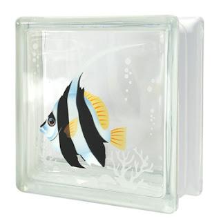 บล็อกแก้ว ปลาโนรี