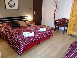 стая No 9
