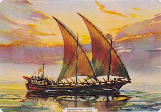 Casca de Noz