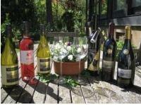 Rezension: Burkheimer Winzer am Kaiserstuhl 2 Weißweine, ein Rosé und 3 Rotweine