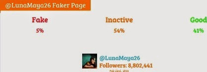 luna maya fake followers